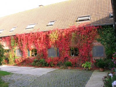 Nieuwpoort - Hotel - Hoevehotel Klein Noordhof